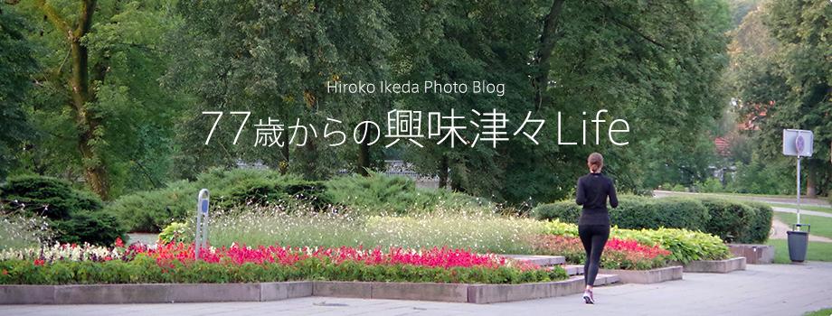 池田博子のフォトブログ